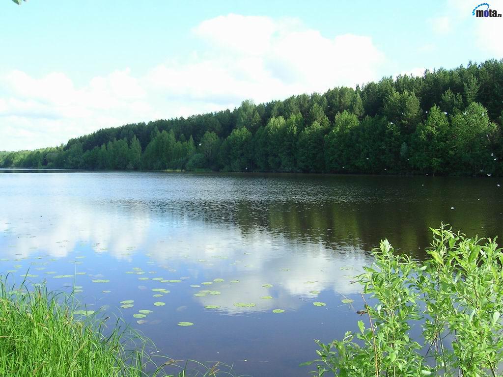 Река Волга - обои