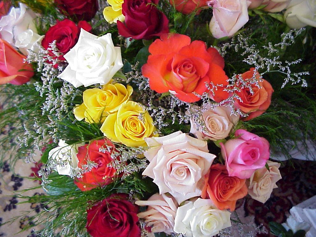Шпалери і картинки, шпалери квіти