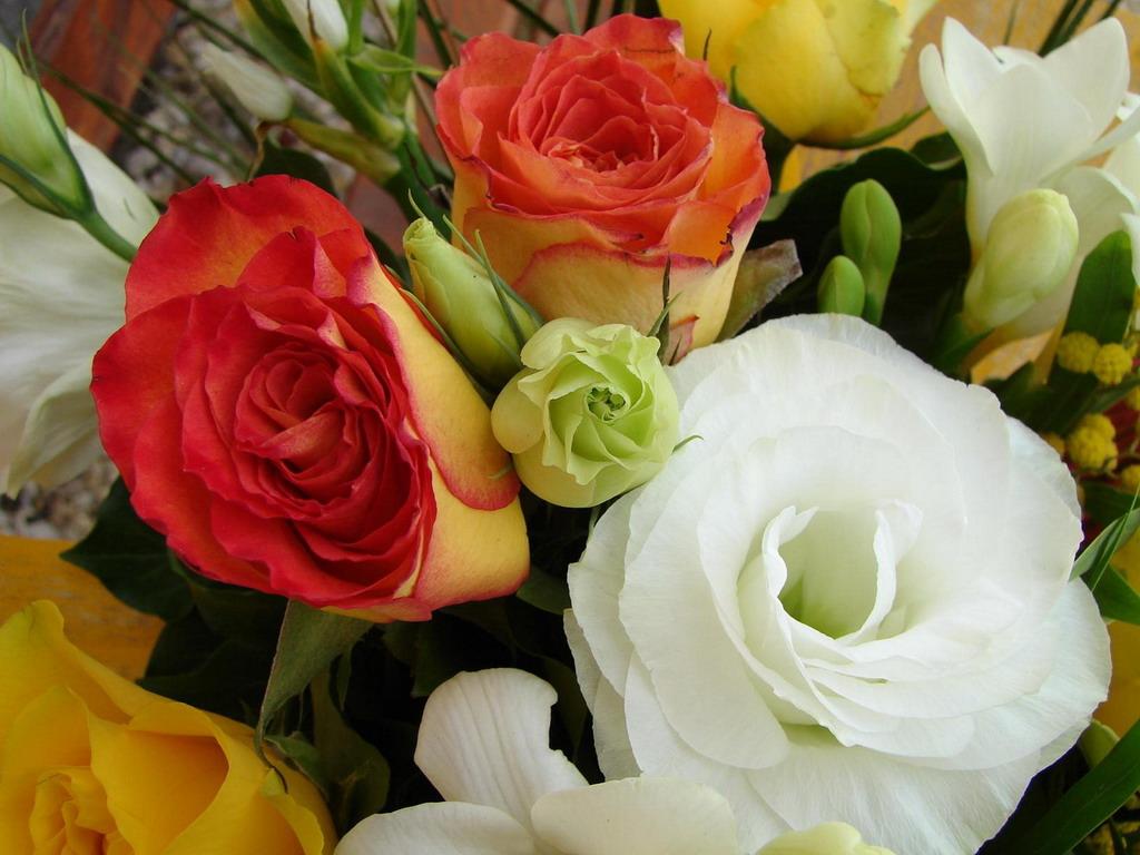 Красивые букеты цветов фото крупным планом