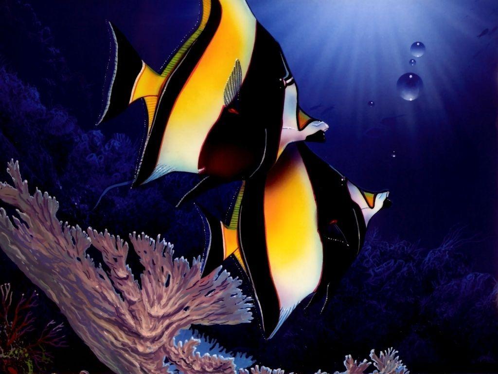 морские рыбки обои