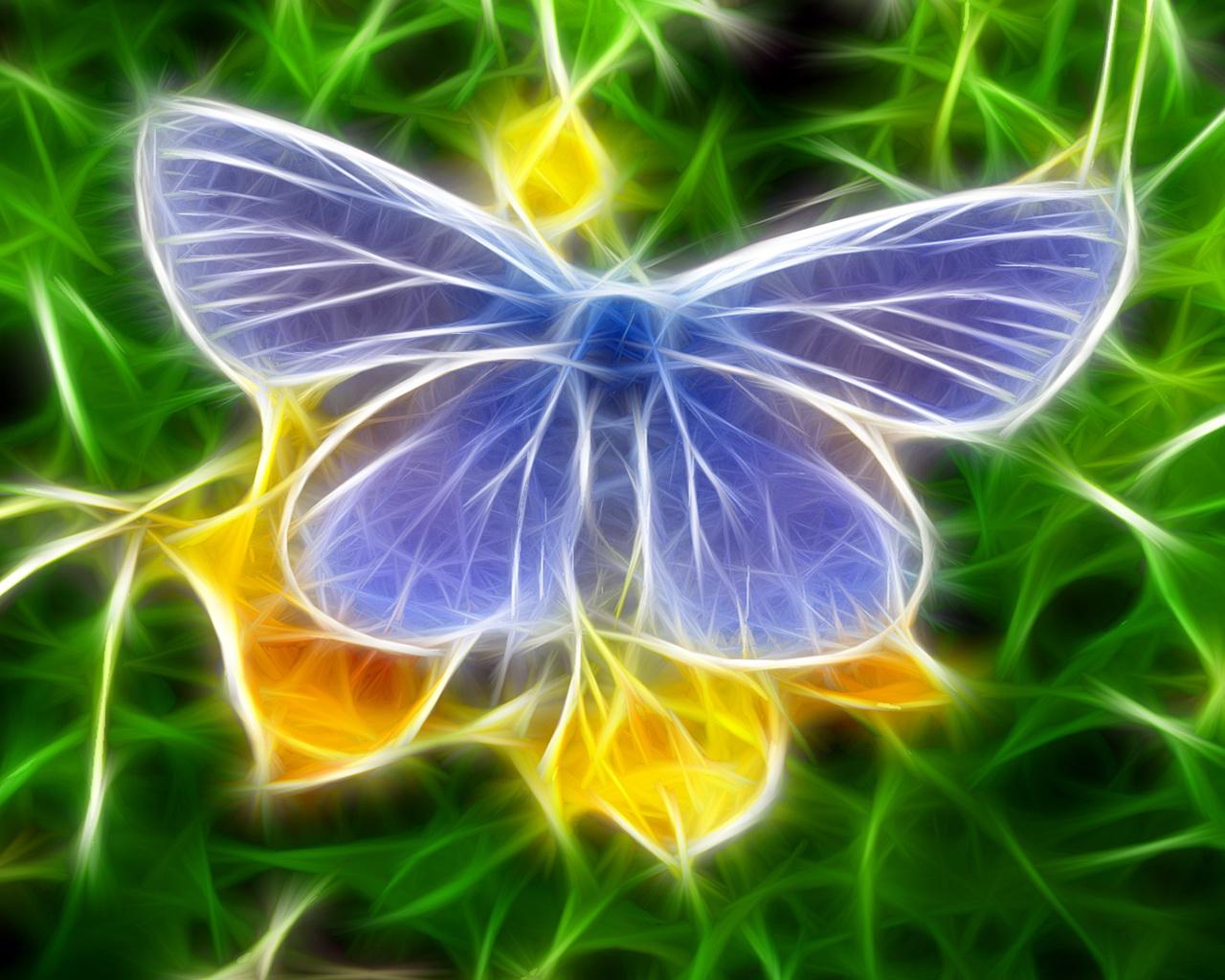 бабочка  в 3д обои