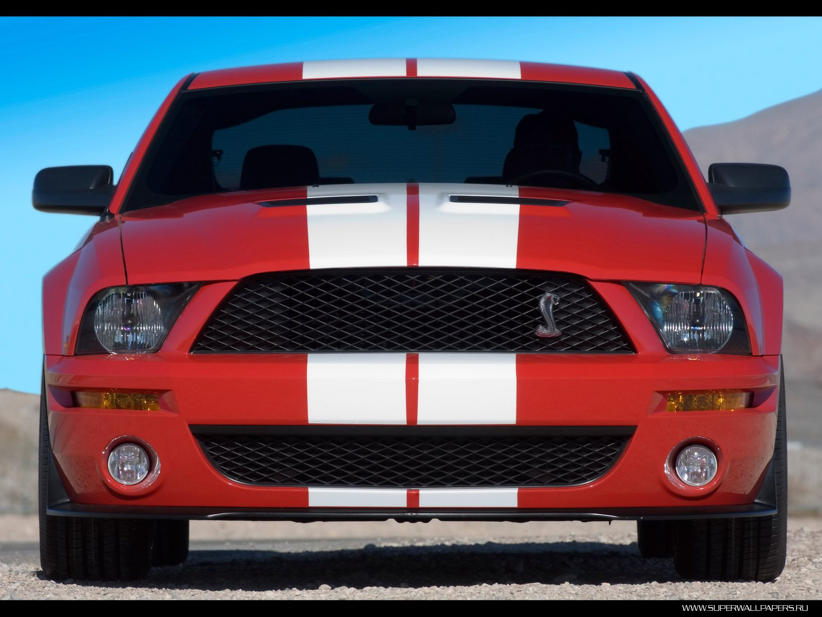 2007 Ford Shelby GT500 обои
