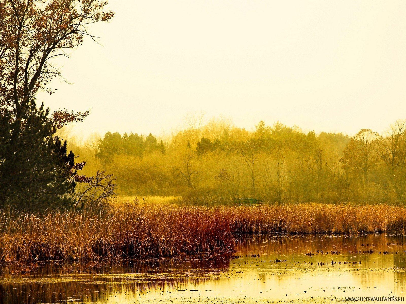 Осенний пейзаж обои