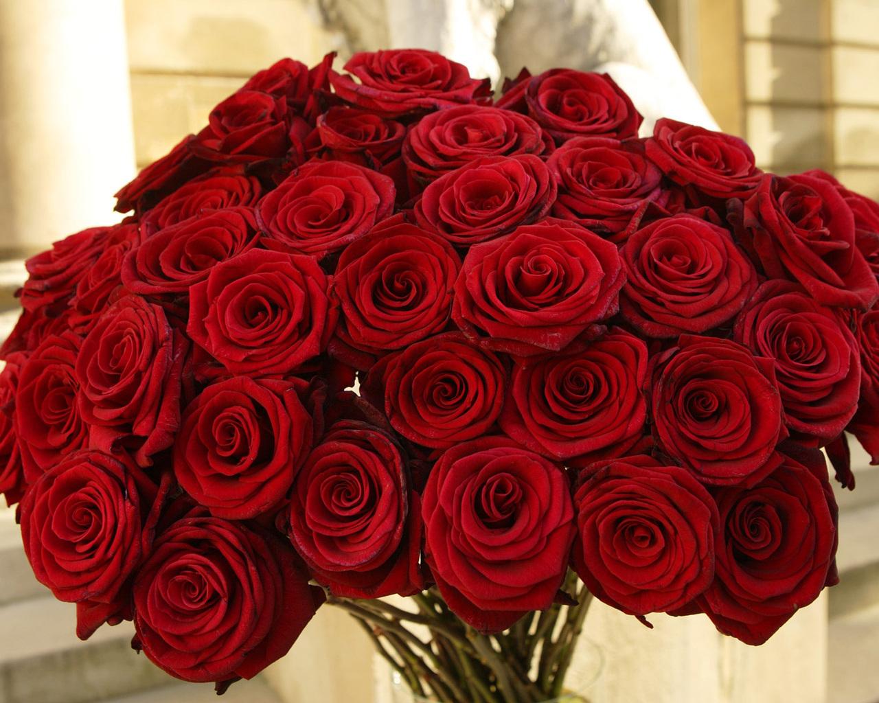 Букет алых роз.  Цветы обои