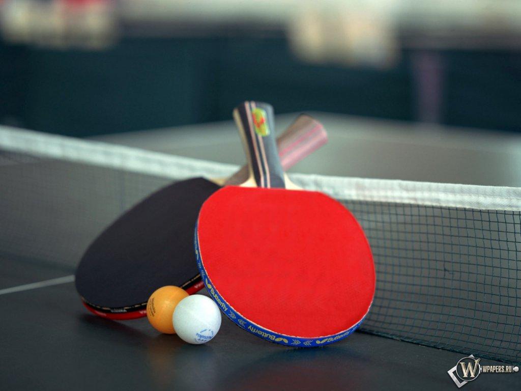 Настольный теннис обои