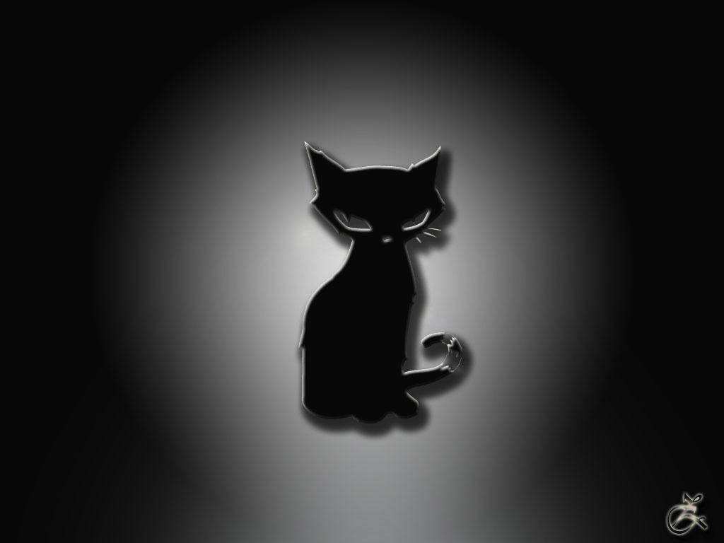 Черный кот обои