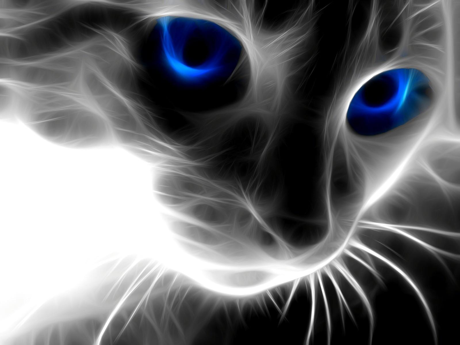 Кот из дыма c синими глазами обои