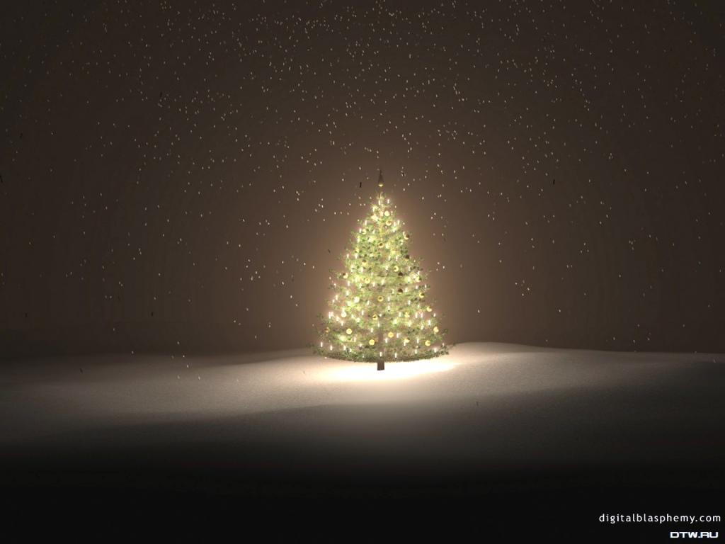 Bild weihnachtsbaum bilder auf ihrem desktop und tapeten