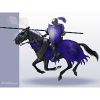 Рыцари обои (2 шт.)