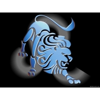 Львы обои (3 шт.)