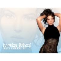 Monica Bellucci обои (6 шт.)