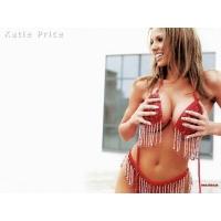 Katie Price Jordan обои (7 шт.)