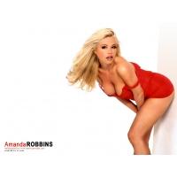 Amanda Robbins обои (2 шт.)