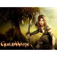 Guild Wars обои (4 шт.)
