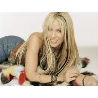 Shakira обои (4 шт.)
