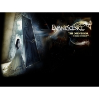 Evanescence обои (7 шт.)