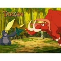 Тарзан обои (2 шт.)