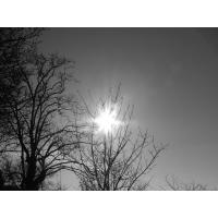 Солнце обои (25 шт.)