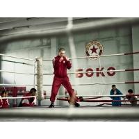 Бокс обои (2 шт.)