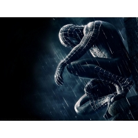 Spider Man обои (6 шт.)