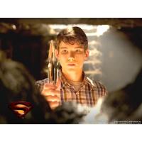 Superman обои (4 шт.)