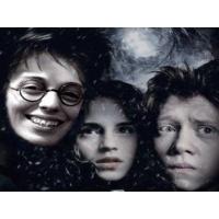 Гарри Потер обои (2 шт.)