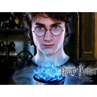 Harry Potter обои (2 шт.)