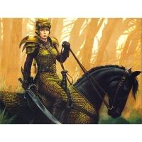 Рыцари обои (9 шт.)