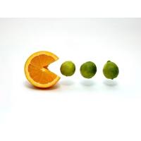 Апельсины обои (2 шт.)