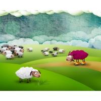 любитель овечек, обои и красивые картинки на рабочий стол