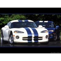 Dodge Viper GTS обои (8 шт.)