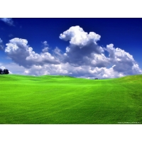 Windows XP обои (87 шт.)