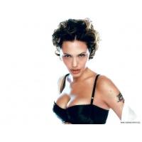 Анджелина Джоли обои (111 шт.)