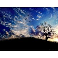 Небо, фото на рабочий стол бесплатно