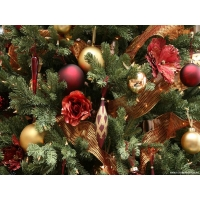 Новогодняя елка, картинки, обои на новые рабочие столы