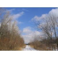 Снег обои (36 шт.)