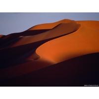 Тень в песке, фото на рабочий стол и картинки