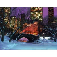 Центральный парк зимой - Нью -Йорк, картинки и красивые обои, изменение рабочего стола