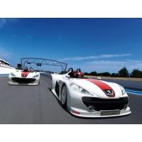 Peugeot Spider обои (2 шт.)