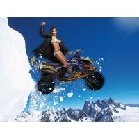 Девушка на снегоходе - картинки и обои - это крутой рабочий стол