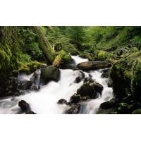 Шум горной реки - скачать картинки и рисунки для рабочего стола