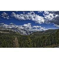 Облака над горным лесом - картинки и прикольные обои на рабочий стол