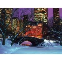 Центральный парк в зимнем Нью-Йорке - новейшие обои на рабочий стол и картинки