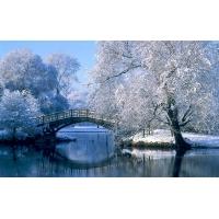 Зимний парк - обои и фото на красивый рабочий стол скачать