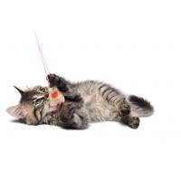 Котенок в игре - бесплатные картинки на рабочий стол и обои