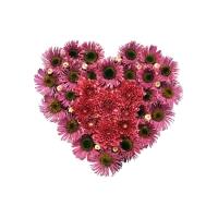 Любовный гербарий - большие картинки на рабочий стол и обои