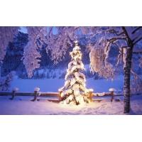 Светящаяся елочка - картинки, заставки на рабочий стол бесплатно