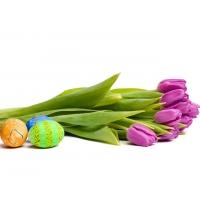 Пасхальные яйца и тюльпаны картинки и обои на креативный рабочий стол