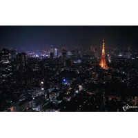 Токио обои (7 шт.)