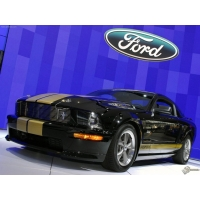 Ford Mustang Shelby обои (2 шт.)